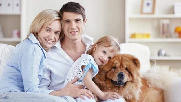 Wills & Trusts dog-young-family Direct Wills St James